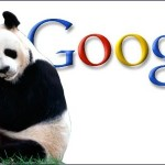 5 Tips to Revive Your Website After Deadly Google Panda Update