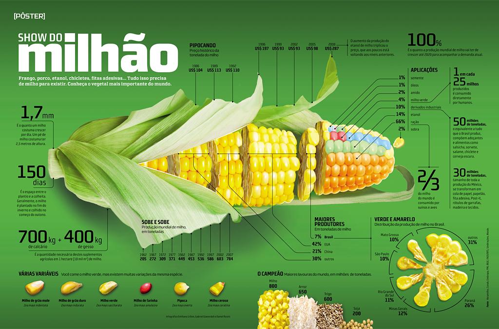 Milhao Infographic