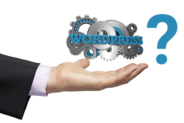 Why should you opt for WordPress Website
