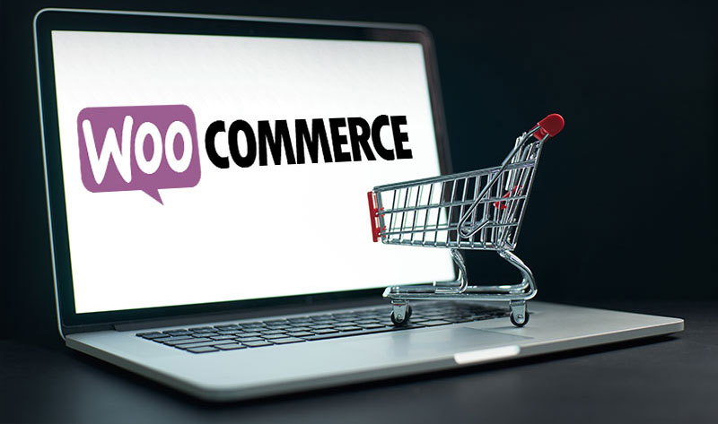 Why the World Loves WooCommerce